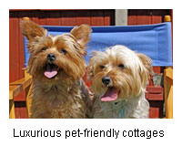 luxury pets welcome cottages West Country
