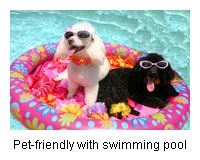 pets welcome holiday cottages cornwall devon somerset own swimming pool